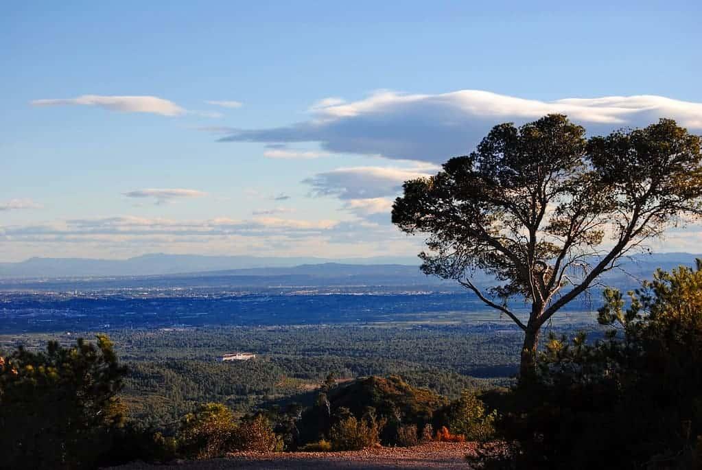 Vista del paisaje de la Sierra Calderona