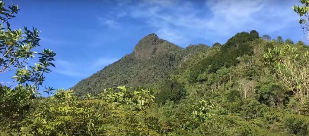 Pico de Loro Cali