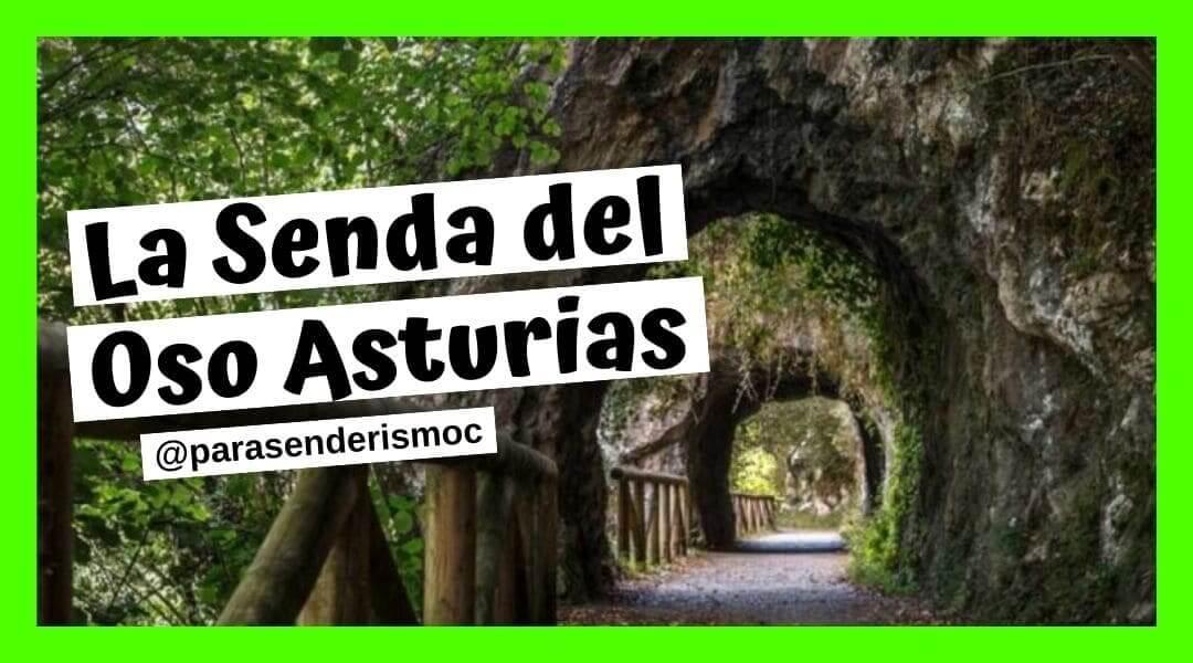 La senda del Oso Senderismo Asturias