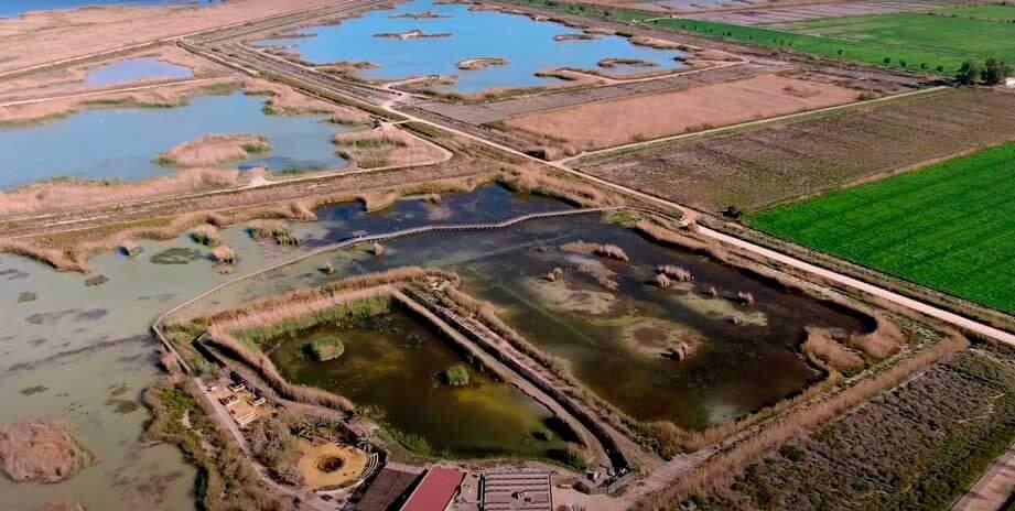 Parque-Natural-de-El-Hondo-rutas-senderismo-Alicante